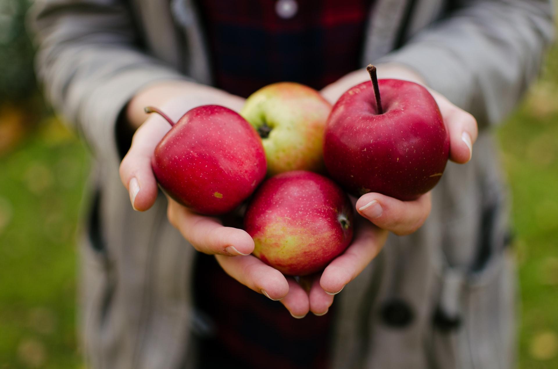 Frau hält vier Äpfel in den Händen, Foto: Aarón Blanco Tejedor, Unsplash